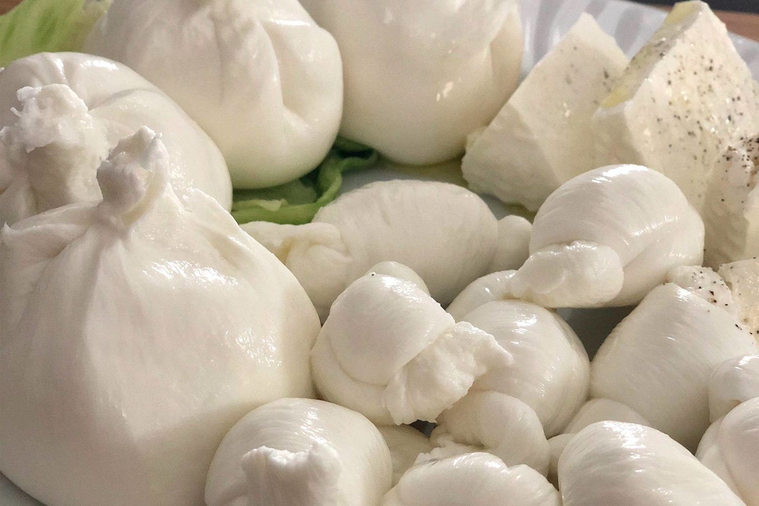 Tasting fresh cheese burrata and mozzarella