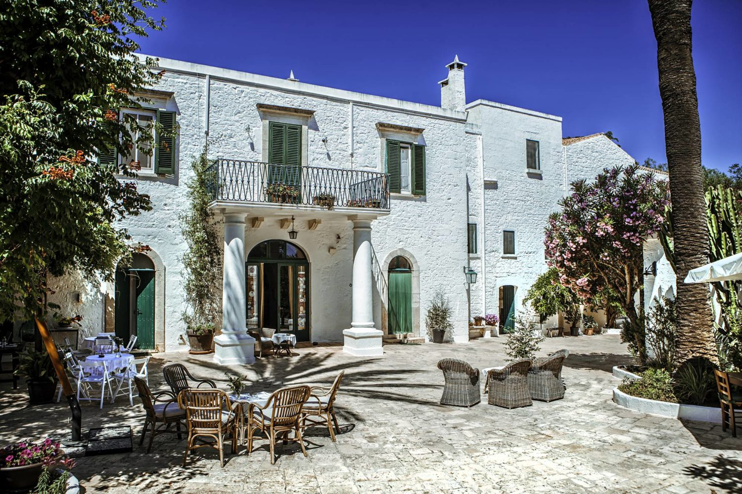 Food and wine tasting sessions in Puglia