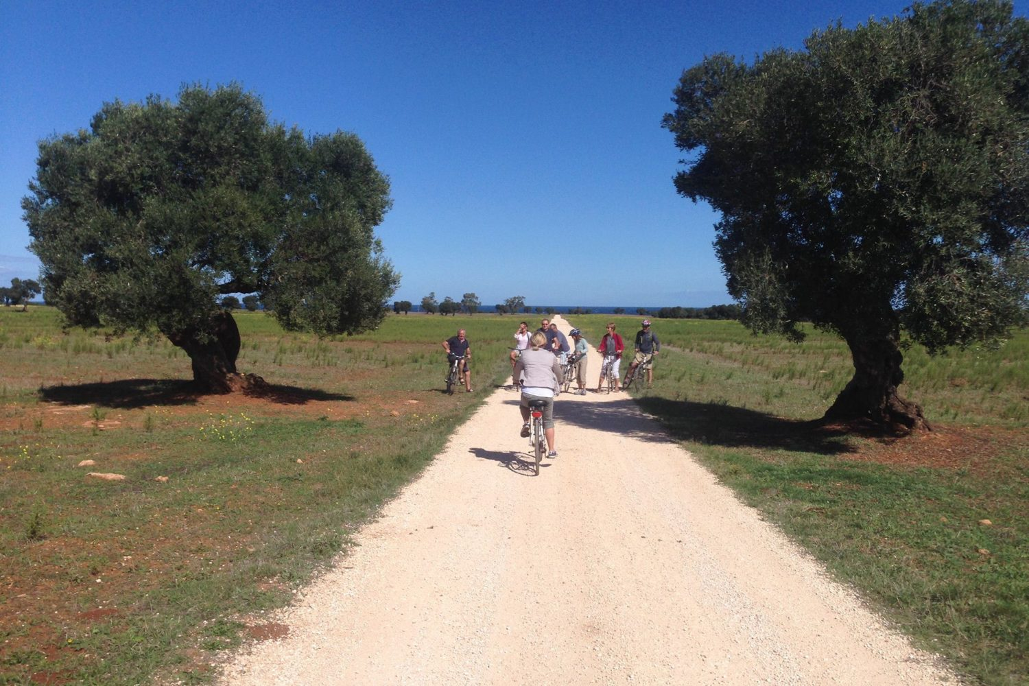 Bike tour in Puglia Italy