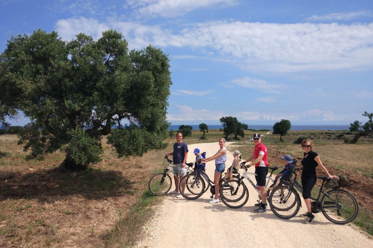 Olive oil bike tour in Puglia Italy