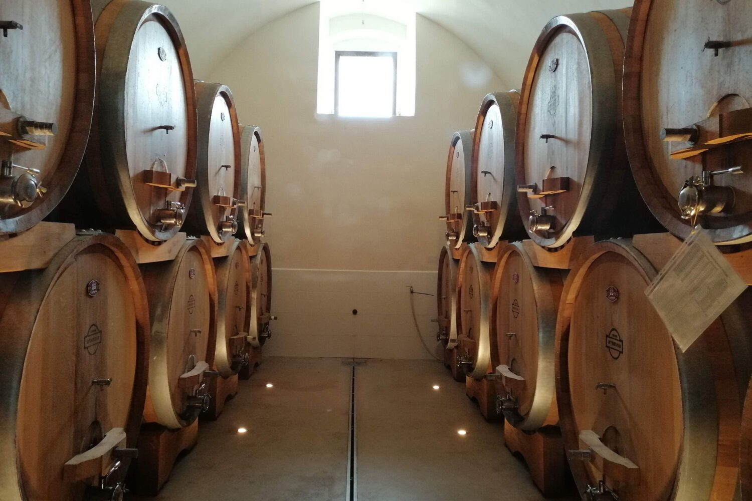 Oak barrels for wine maturation