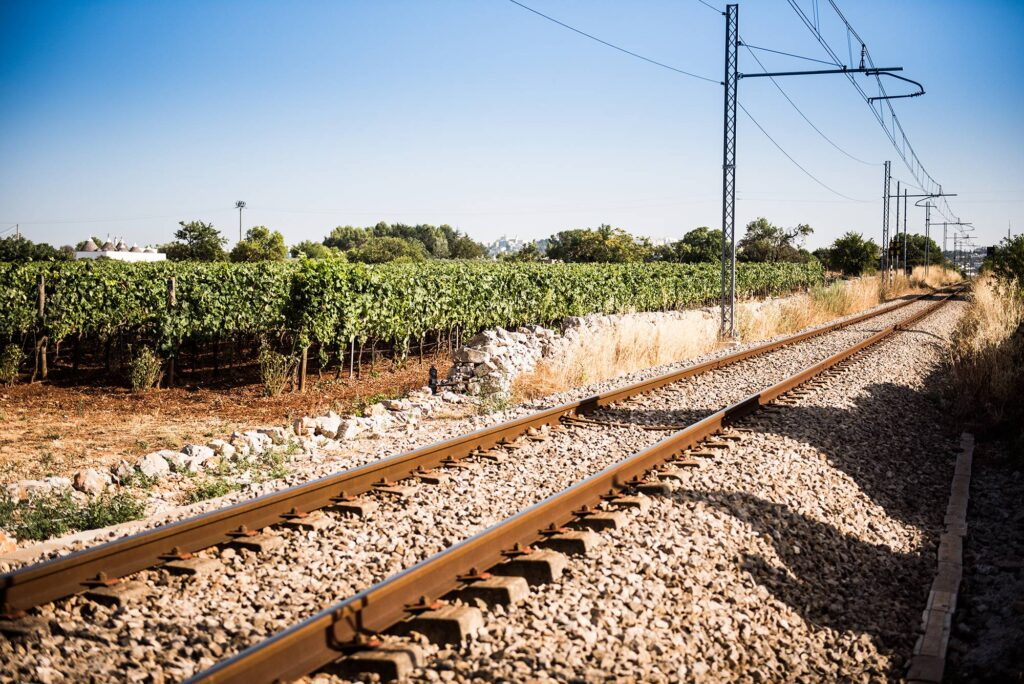 vineyard and rails Puglia terrachevive