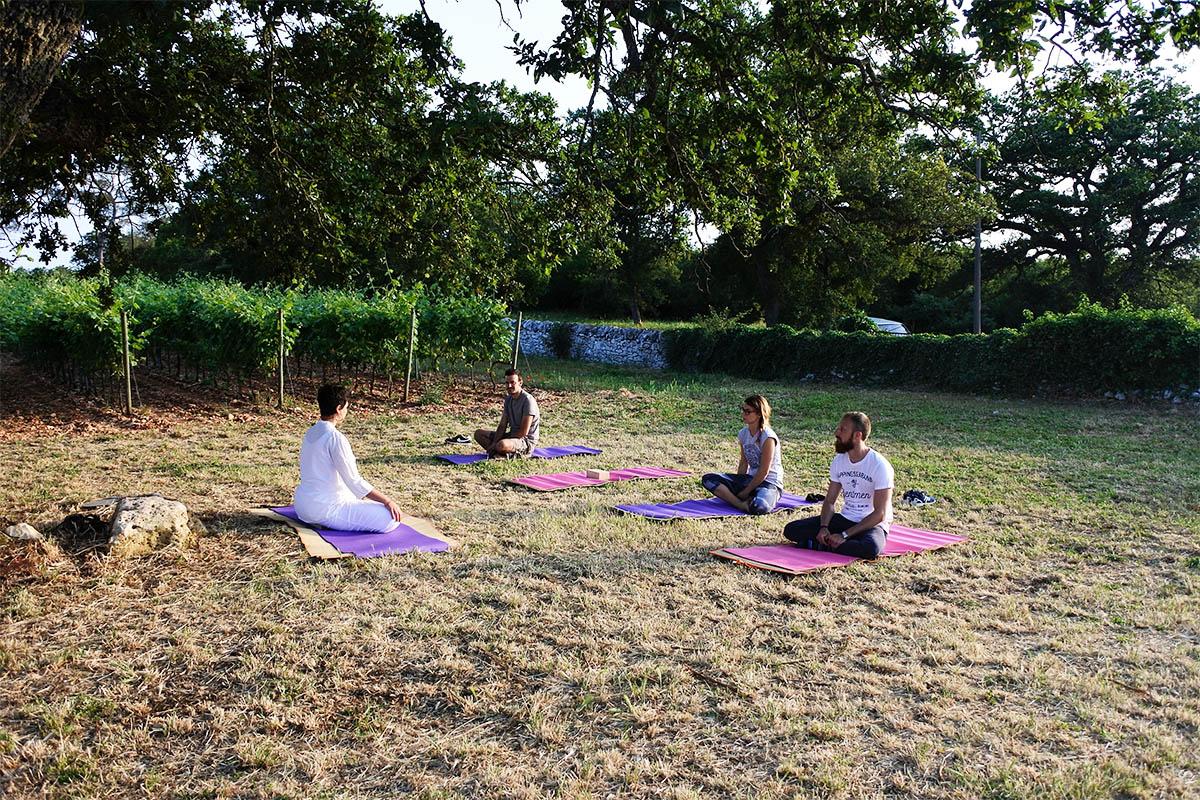 Lezione di yoga integrale tra i filari di un vigneto