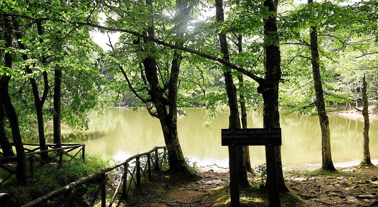Unesco sites of Puglia: foresta umbra