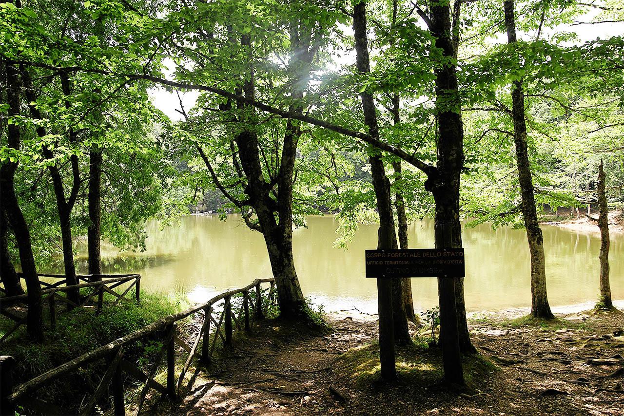 i siti unesco della puglia foresta umbra