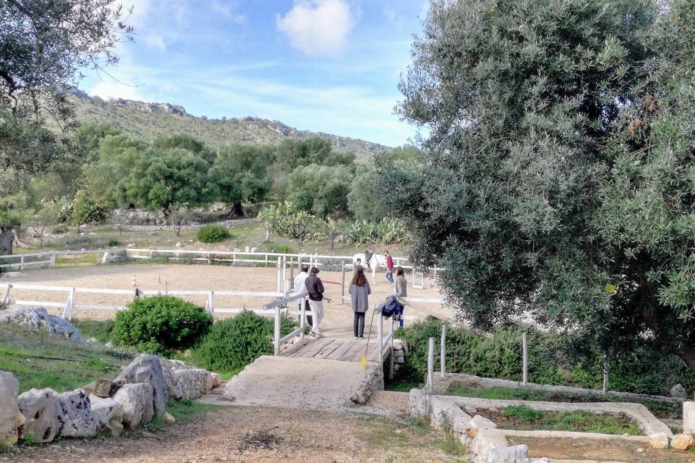 Tour a cavallo in Puglia