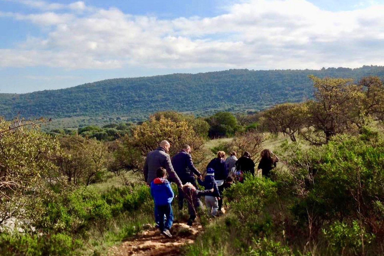 Trekking con degustazione olio evo Puglia