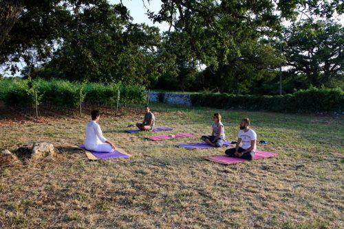 Lezione di yoga integrale in vigneto di antica masseria