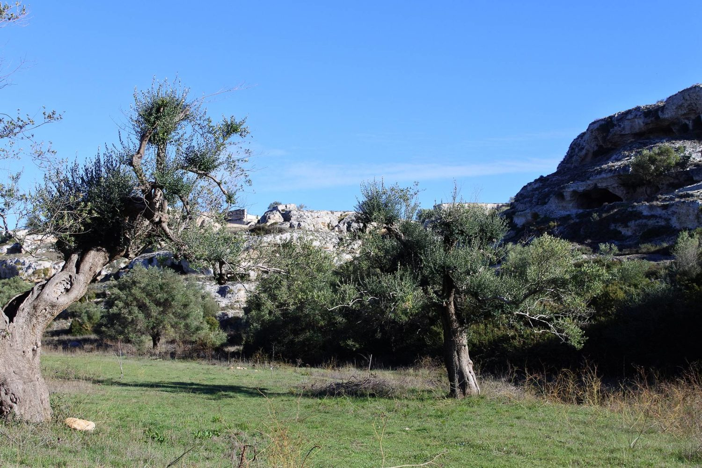 Escurioni natura in Puglia