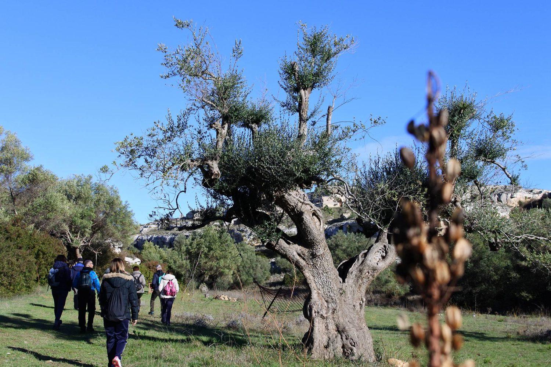 Turismo ambientale in Puglia