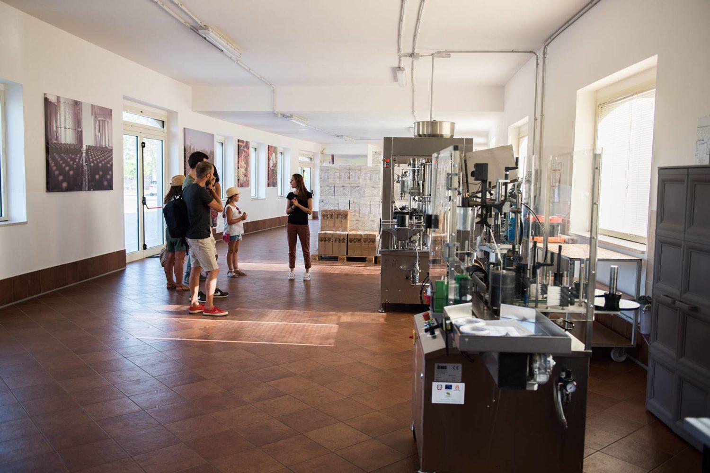 Winery tour wine tasting in Puglia