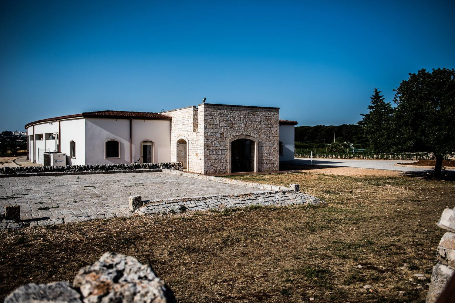 Guided tour of winery in Puglia with wine tasting