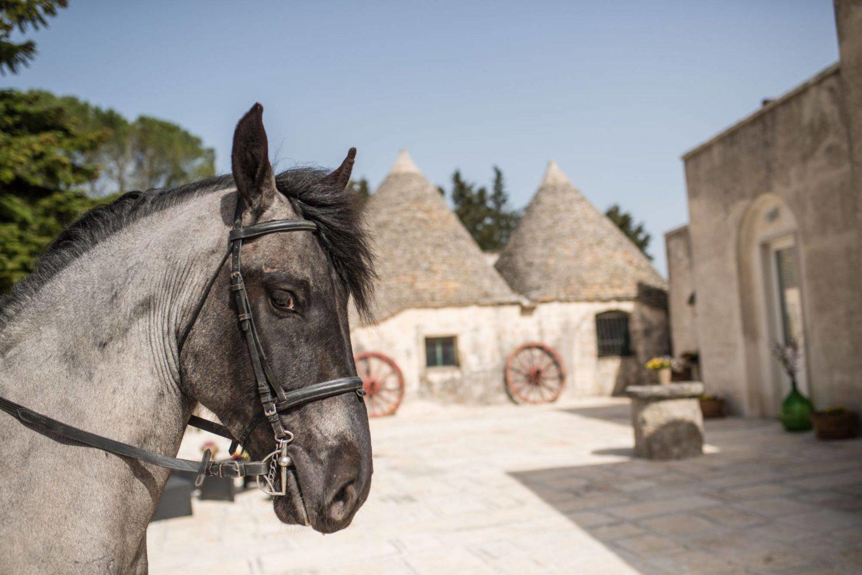 Anadare a cavallo in Puglia