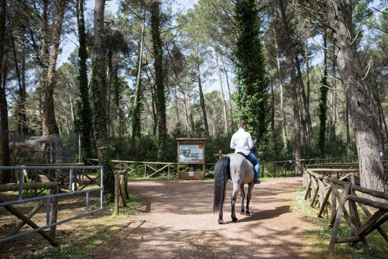 Passeggiata a cavallo in Puglia