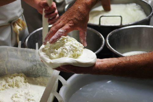 Degustazione di formaggi in puglia