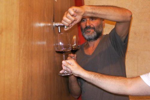 Degustazione di vini bio in azienda vinicola sinergica