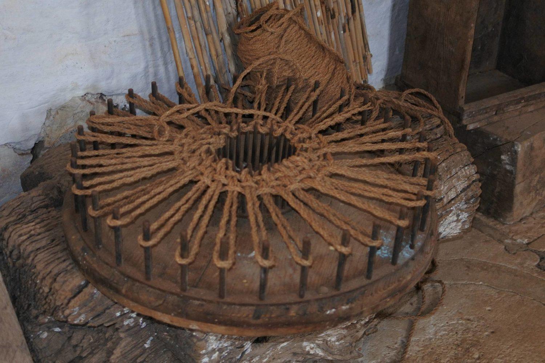 Tour antica Masseria Brancati Ostuni