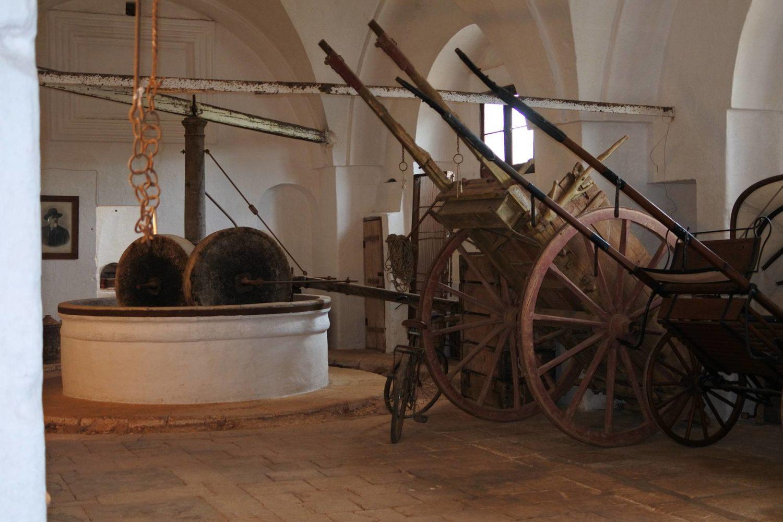 Masseria Brancati Ostuni Frantoio moderno