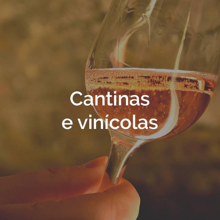 Cantinas e vinícolas box Terra che Vive
