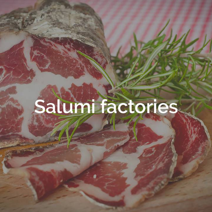 Salumi factories box Terra che Vive