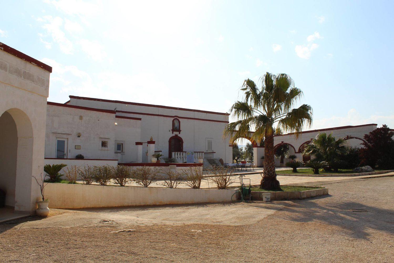 Oil tasting in masseria in Puglia