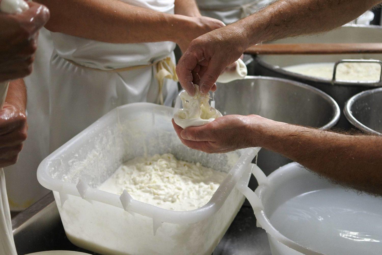 Come fare la mozzarella e la burrata