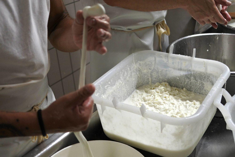 Come preparare i latticini freschi in casi