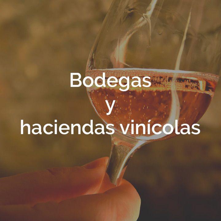 Bodegas y haciendas vinícolas box Terra che Vive