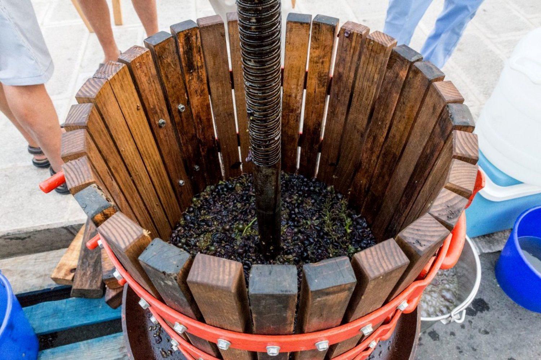 Puglia wine production