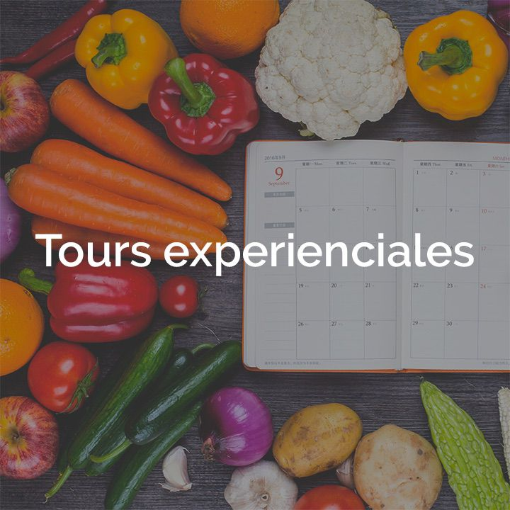 Tours experienciales box Terra che Vive