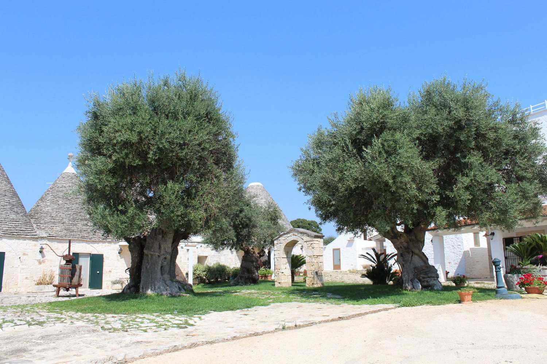 Best lunch agriturism Puglia