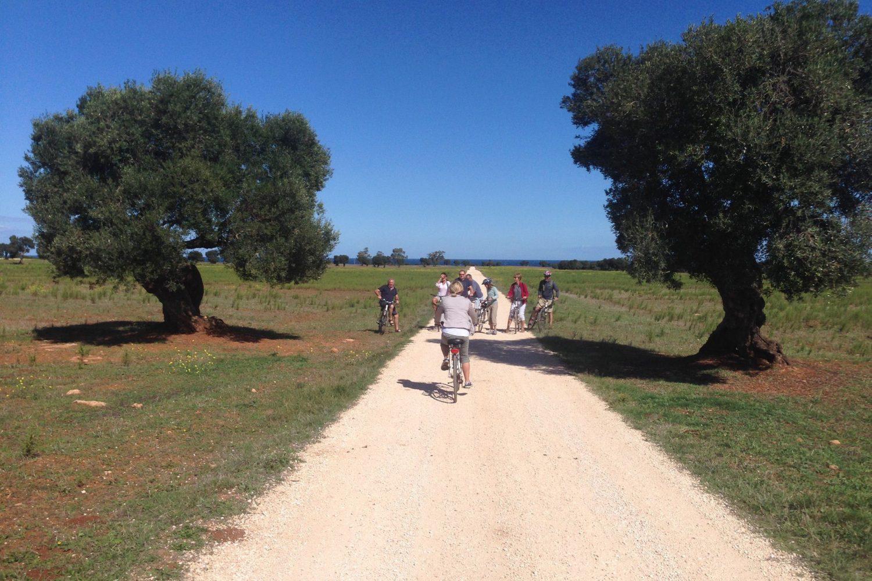 Bike tour in Puglia Italy