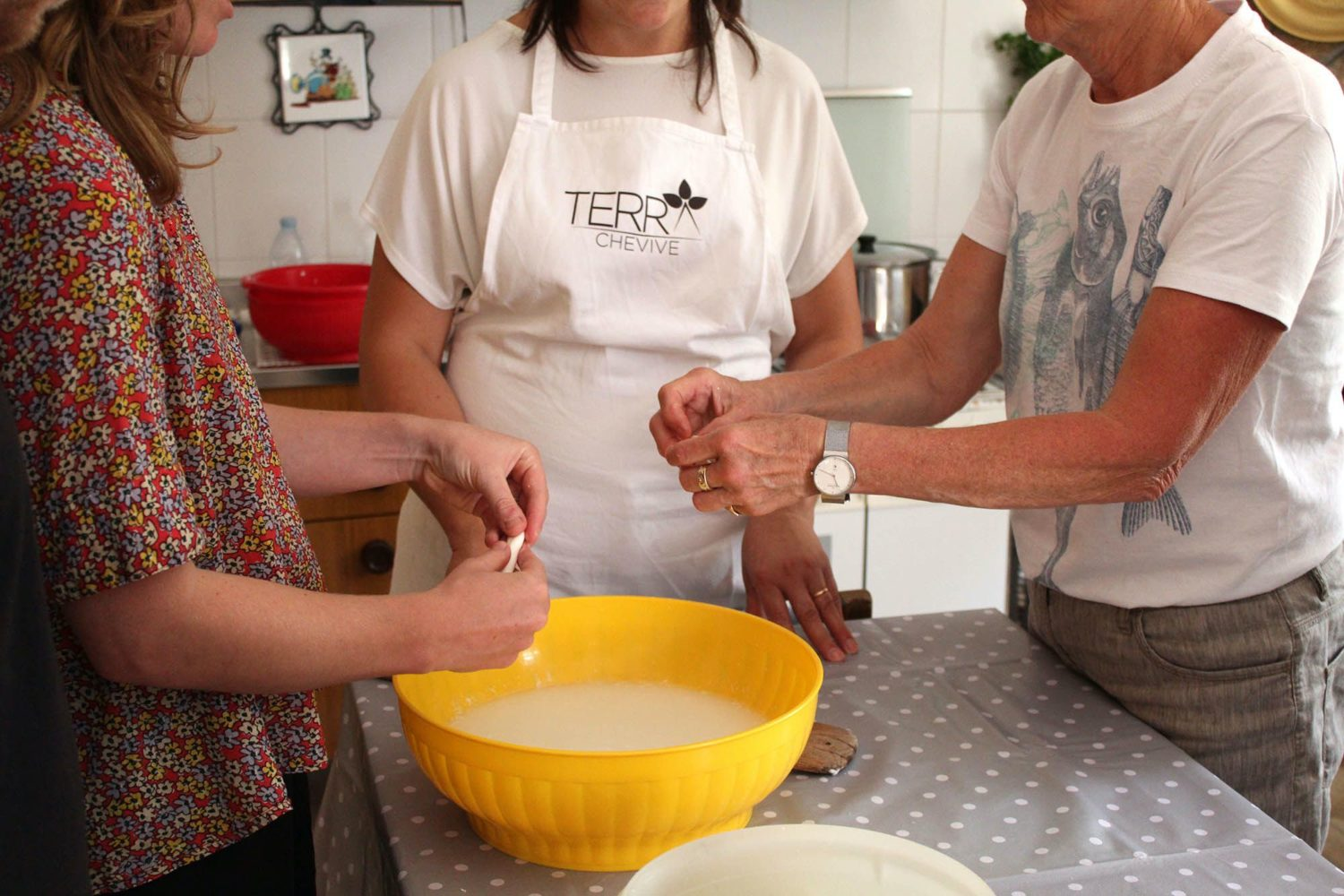 Best cheese tour Puglia